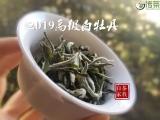 喝白茶时,茶汤浑浊的3种原因,看看你中招了没?