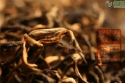老茶鬼选茶丨果蜜香浓醇厚耐泡纯手工古树金芽滇红茶(2021春茶)