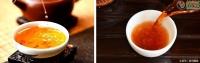 普洱茶生茶好还是熟茶好?解析熟茶和陈年生普各自的优缺点