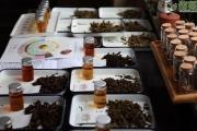 正确理解普洱茶仓储是属于加工环节