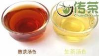 普洱茶的功效普洱茶生茶和熟茶的区别有哪些?