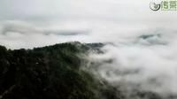 云南普洱茶新六大茶山和古六大茶山的区别和联系!